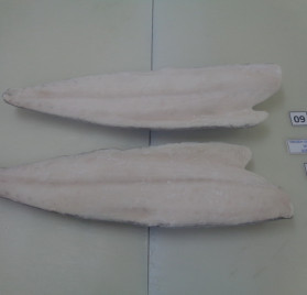 Oilfish Fillet Skin On